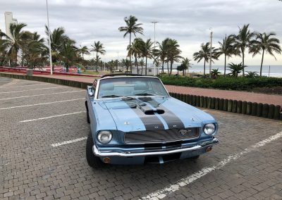 durban-special-places-and-things