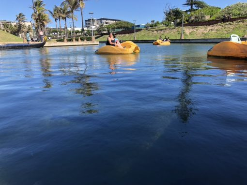 pedal-boats-durban-things-to-do
